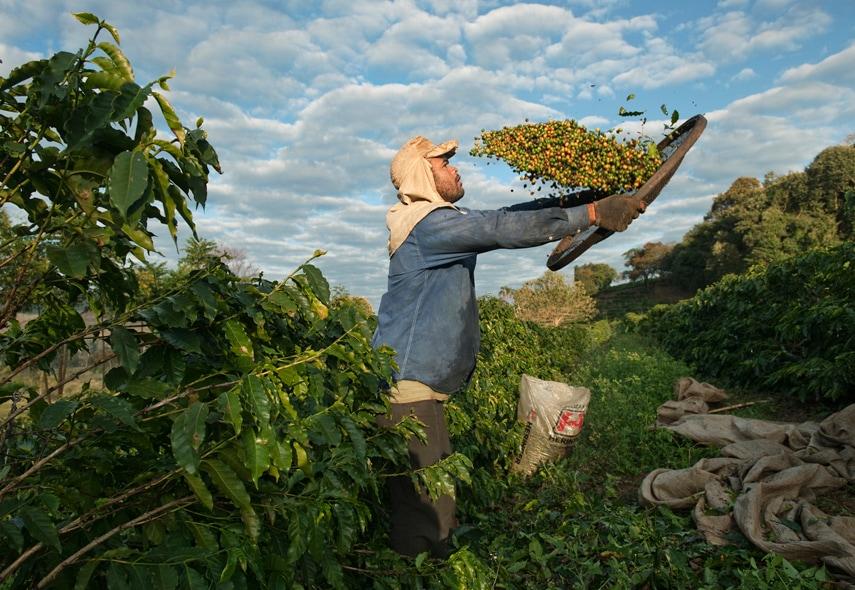 Le foto del reportage di Steve McCurry 1