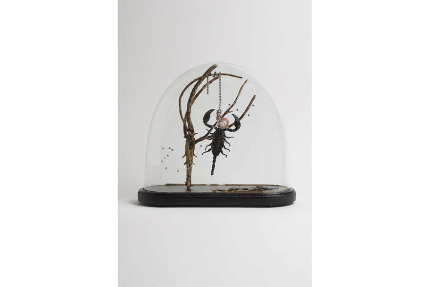 SCORPION by Bouke de Vries Signs (Metamorphosis)