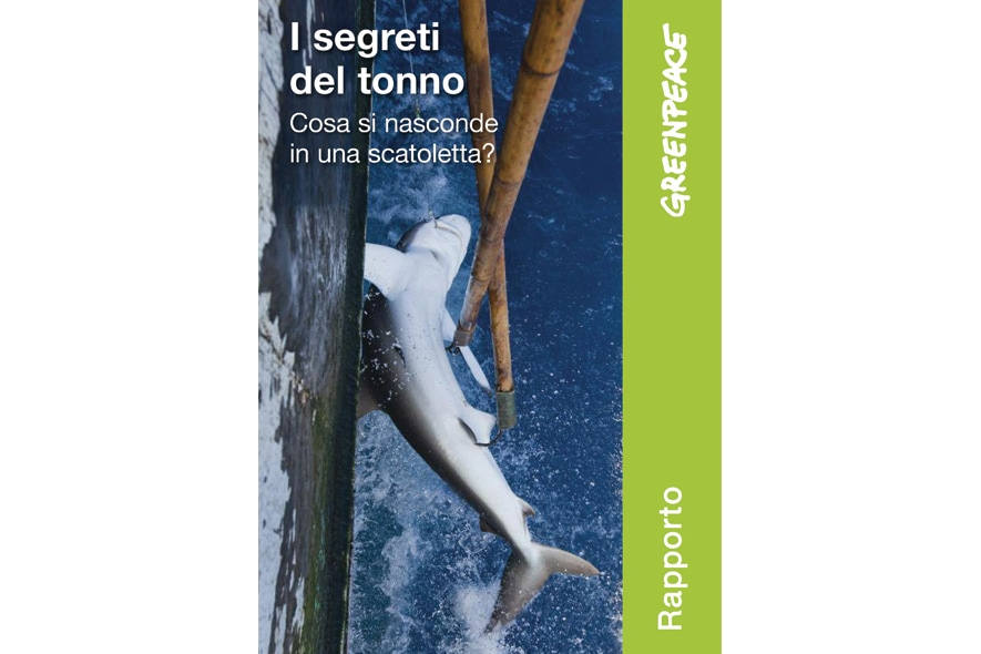 Il rapporto  I segreti del tonno
