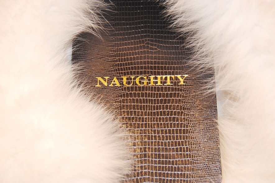 Naughty Nice notebook by D.L