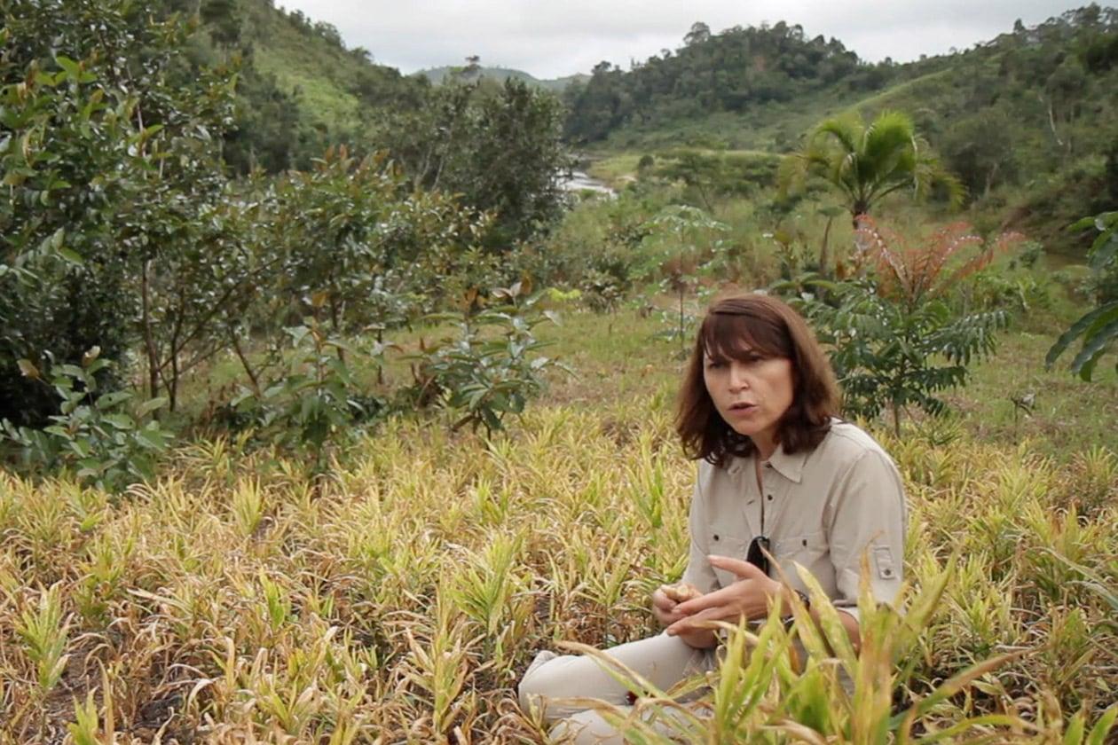Chanel L'Homme et L'Environnement per una produzione sostenibile