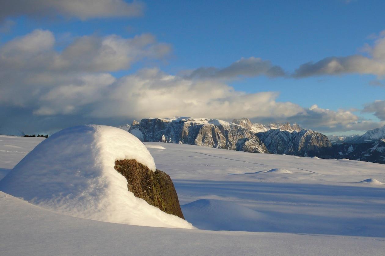 Il Waldhotel Tann si trova sull'altipiano del Renon in Alto Adige