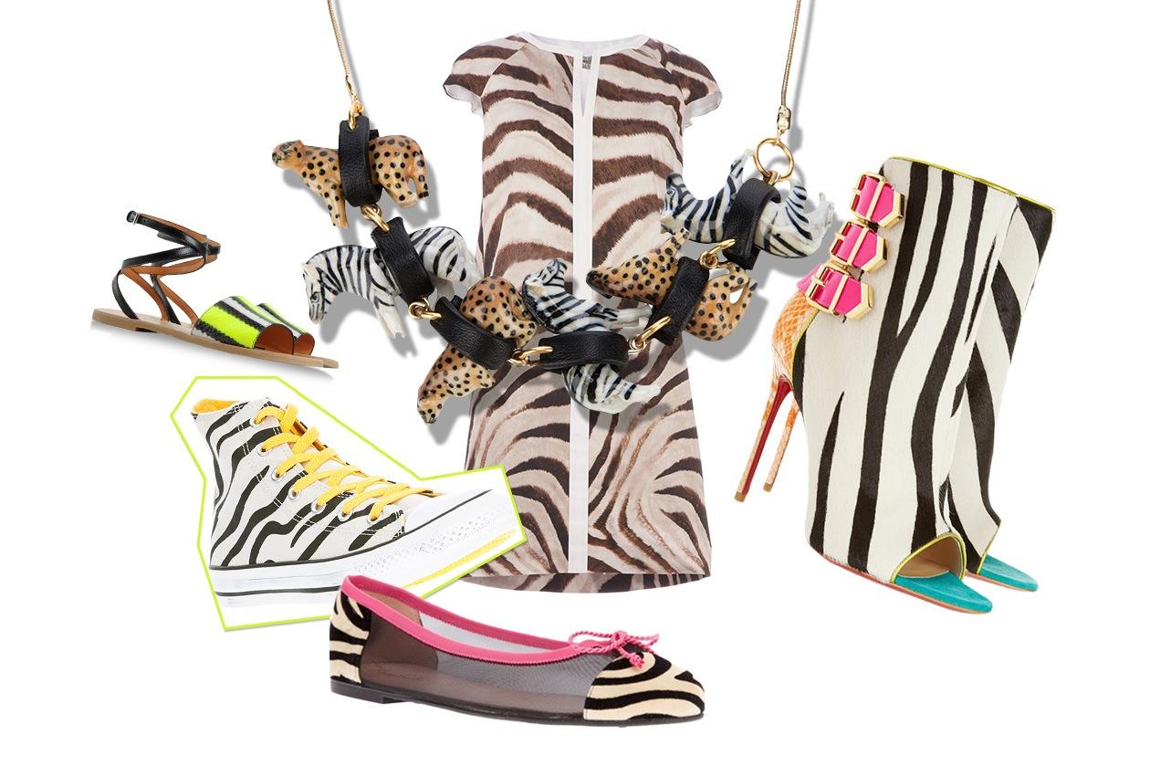 Cover collage zebra animalier