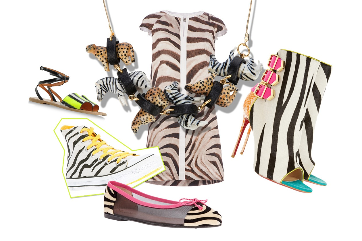 Cover collage zebra animalier