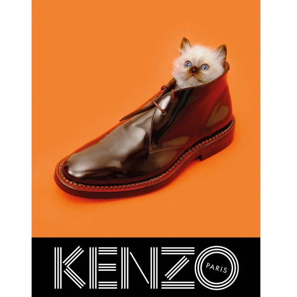 KENZO FW13 Campaign cat shoe