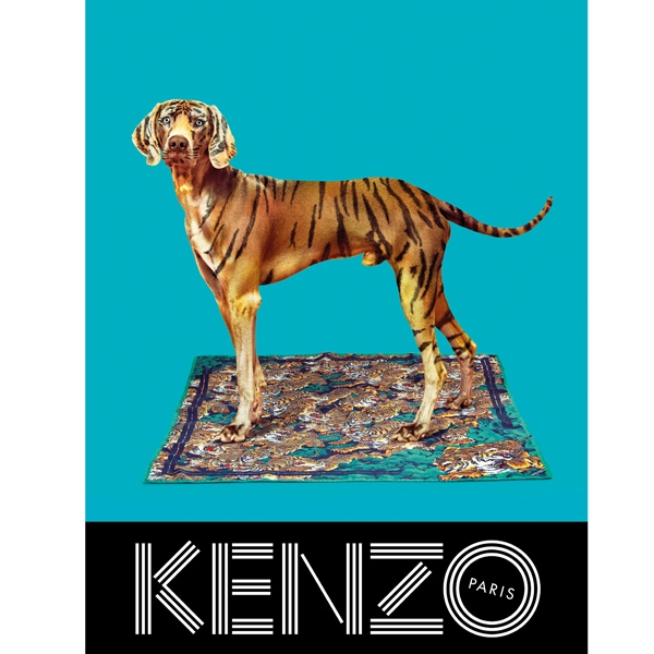 KENZO FW13 Campaign scarf