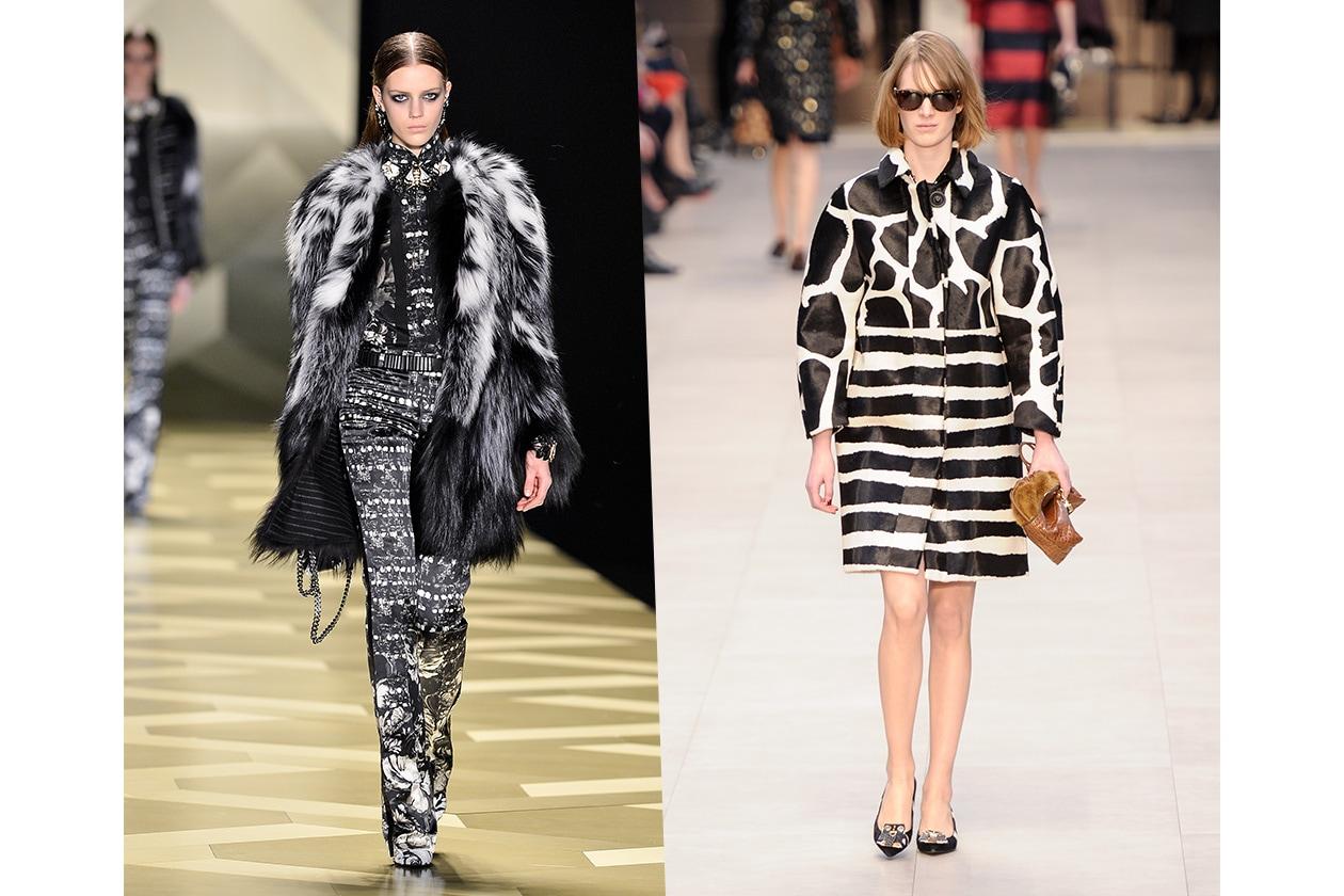 Fashion Bianco e Nero Burberry Cavalli