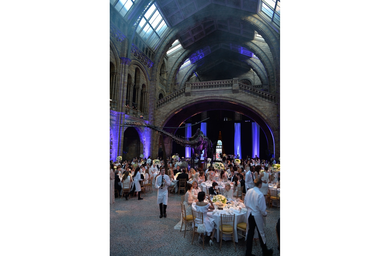 gala dinner the natural history museum london