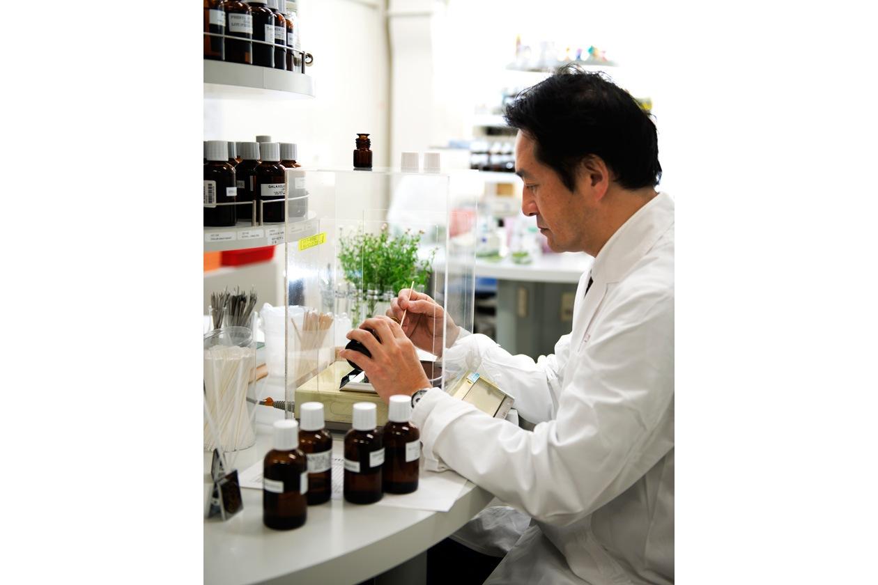 Preparazione della fragranza: floreale e dall'effetto rilassante