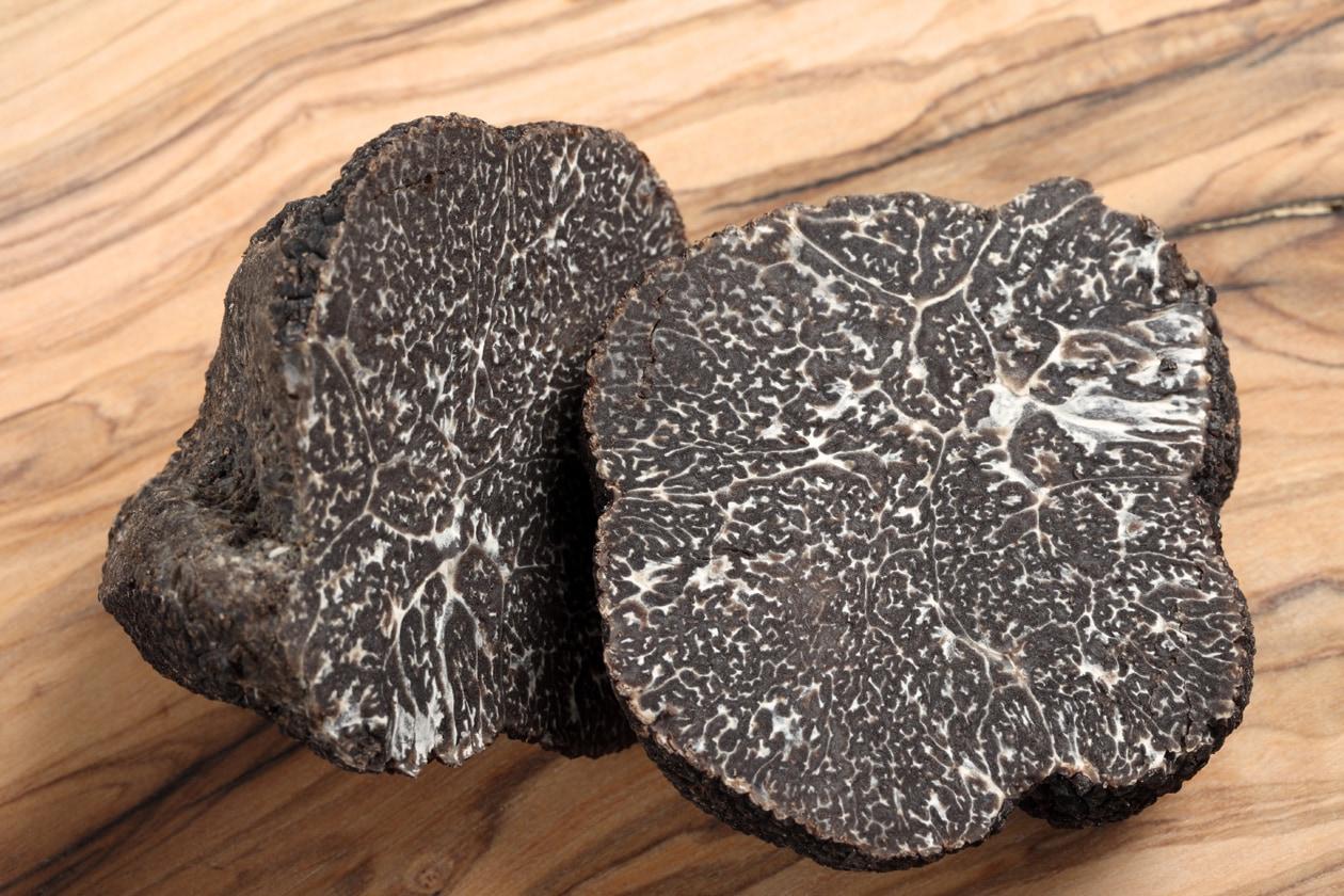 I tartufi sono selezionati sulla base della loro maturità che si rivela attraverso strie bianche, marmorizzate e un elevato contrasto del colore bianco e nero