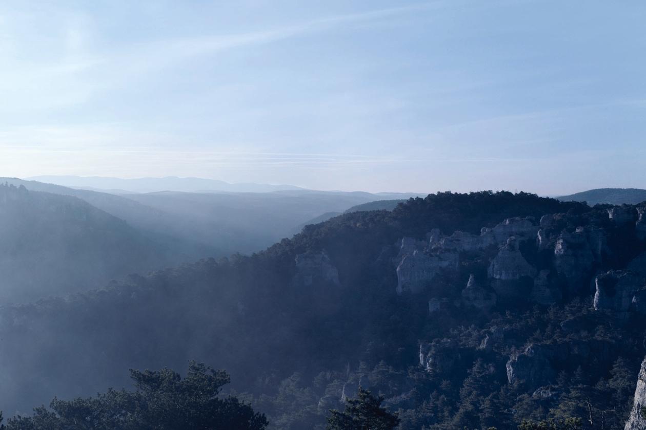 Presente nella regione sud-occidentale della Francia, il Tartufo Black Diamond si sviluppa attraverso una relazione simbiotica con le radici di querce e noccioli