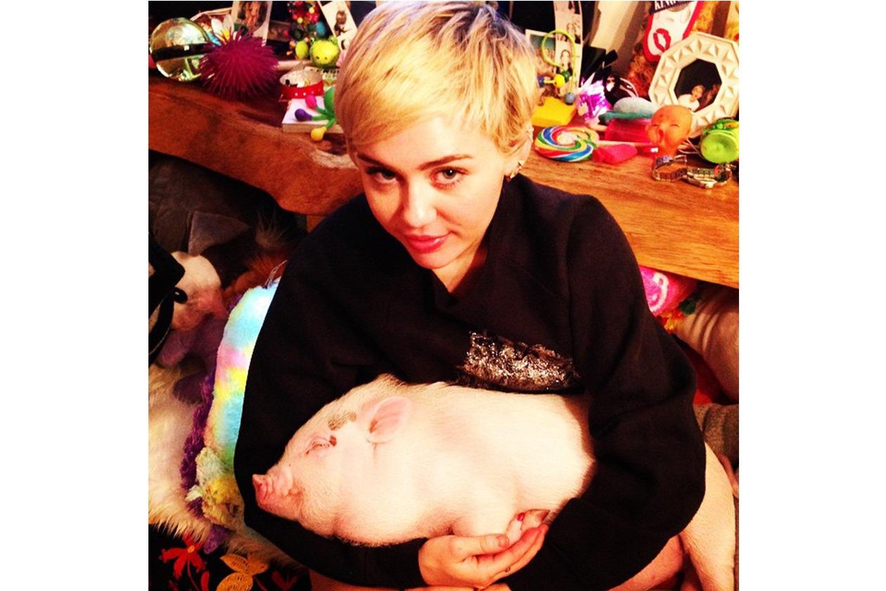 Miley Cyrus: «my bb