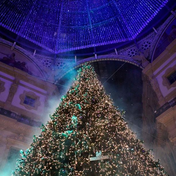 Swarovski accende l'albero di Natale a Milano
