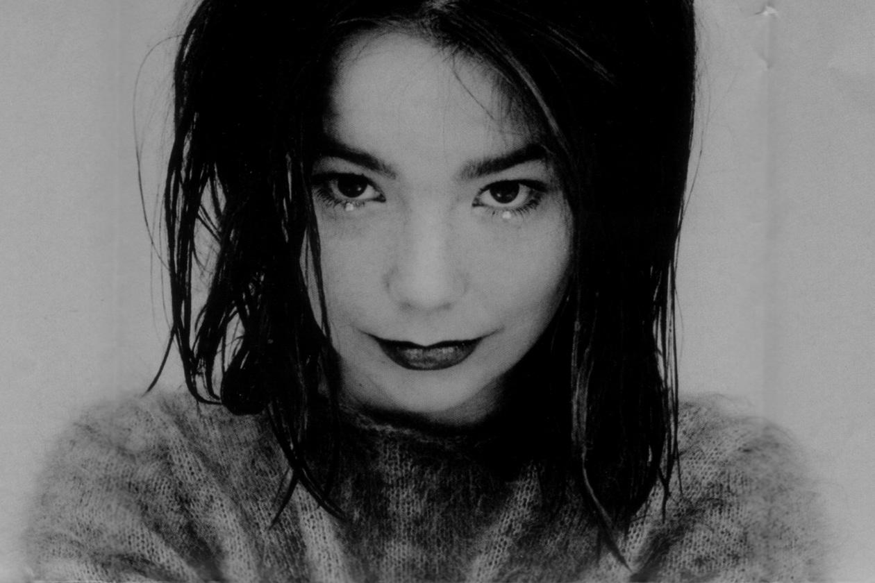 Björk Debut 1993