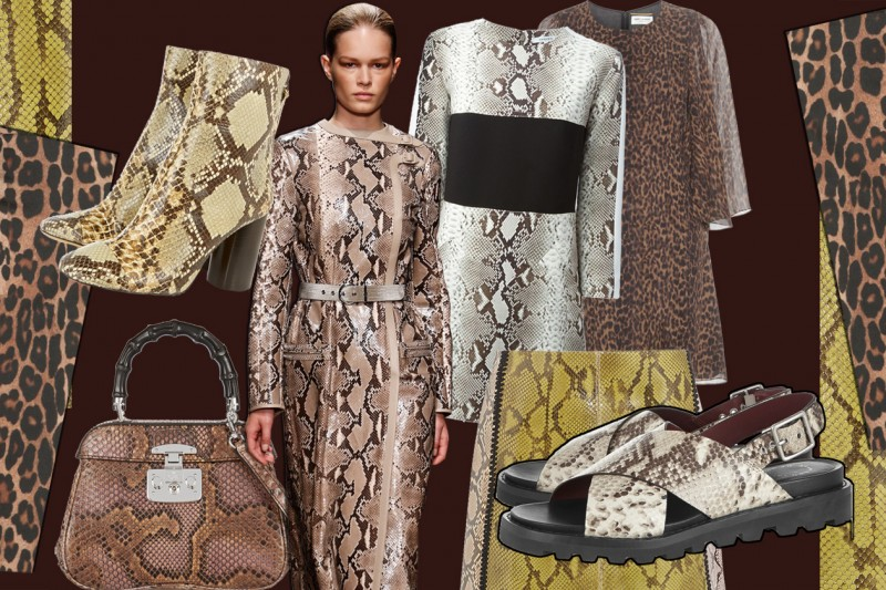 Tendenza animalier per l'estate 2015