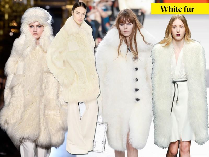20_white_fur