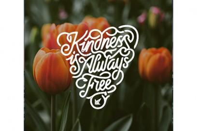 @mrdoodle – kindness