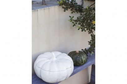 La zucca