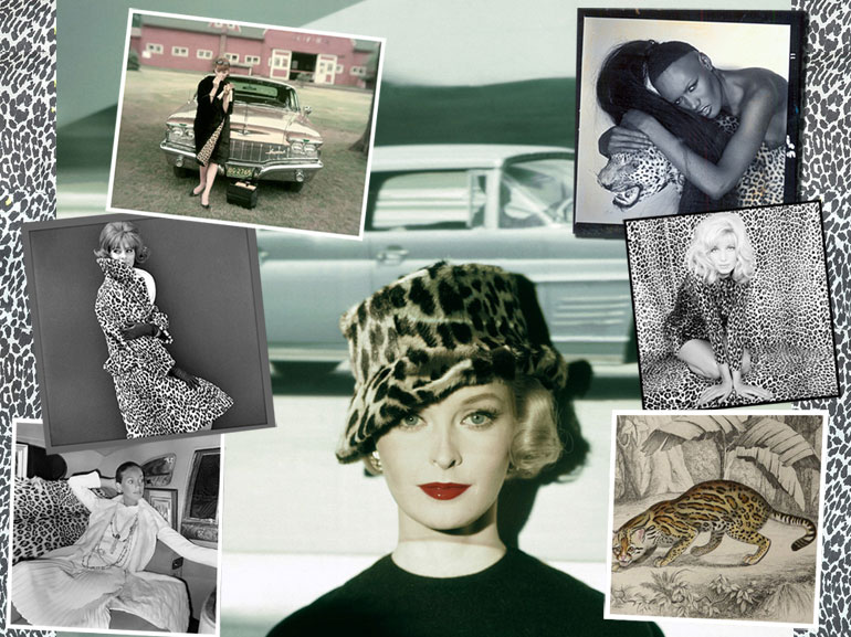 MOBILE_leopard