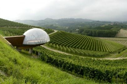 acino d'uva design cantina Ceretto