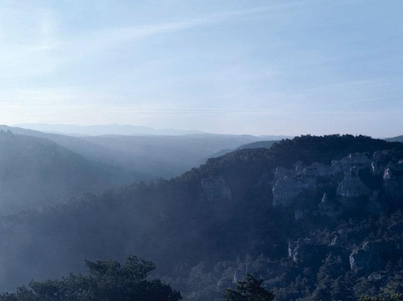 Presente-nella-regione-sud-occidentale-della-Francia-il-Tartufo-Black-Diamond-si-sviluppa-attraverso-una-relazione-simbiotica-con-le-radici-di-querce-e-noccioli