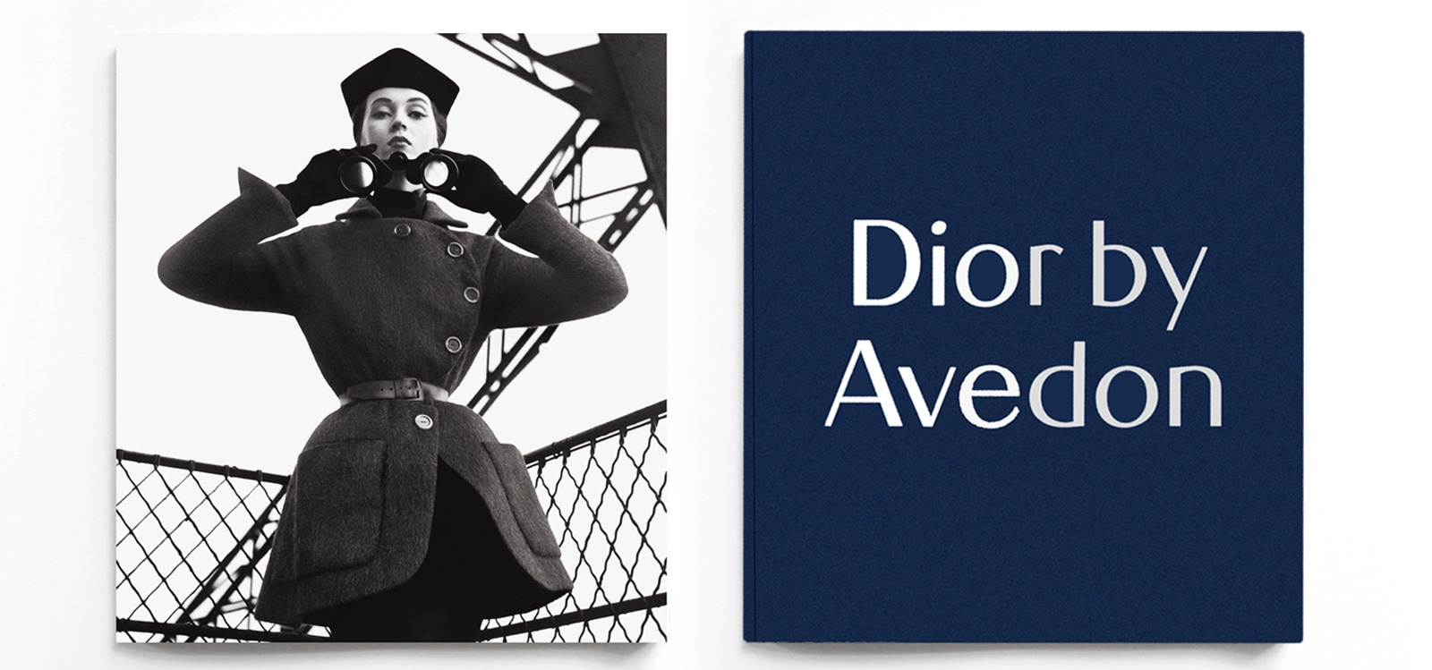 cover-dior-avedon-desktop