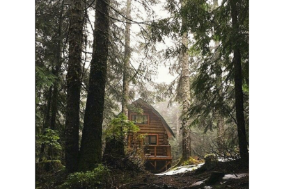 @my_dream_cabin – in the woods