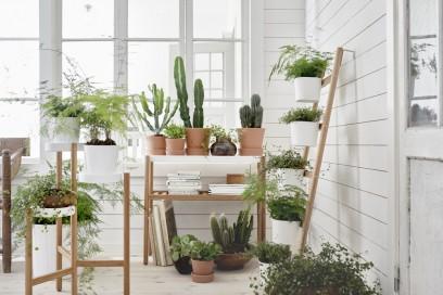 La serie di supporti per piante SATSUMAS