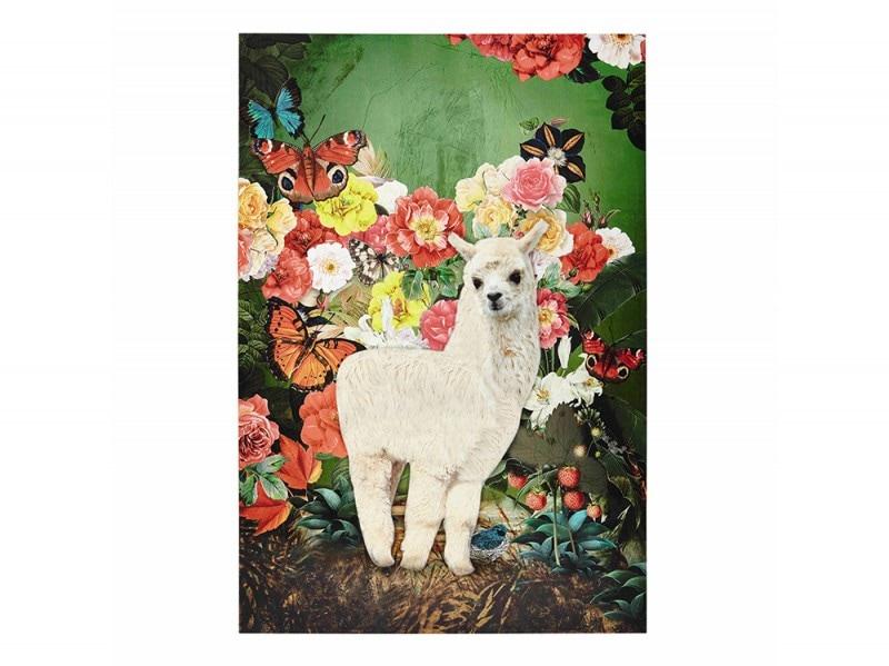 Stampa «Santa rosa»