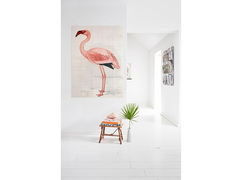 Flamingo fever