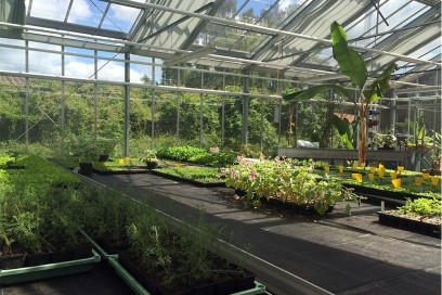 Weleda-giardini-collezioni-pe2016-giardini-9-serra