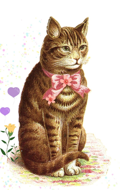 cat-bow
