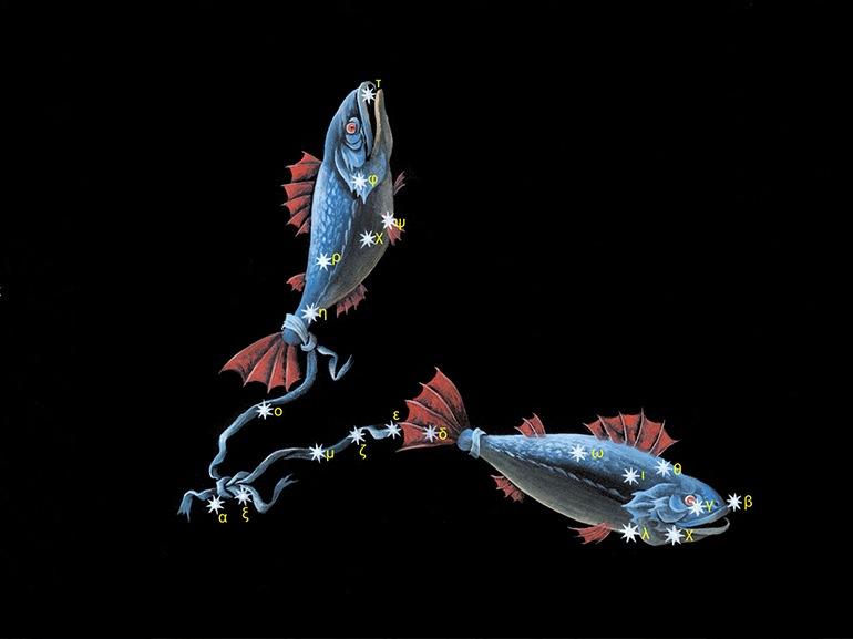 pesci segno zodiacale