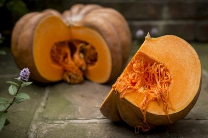 zucca arancione