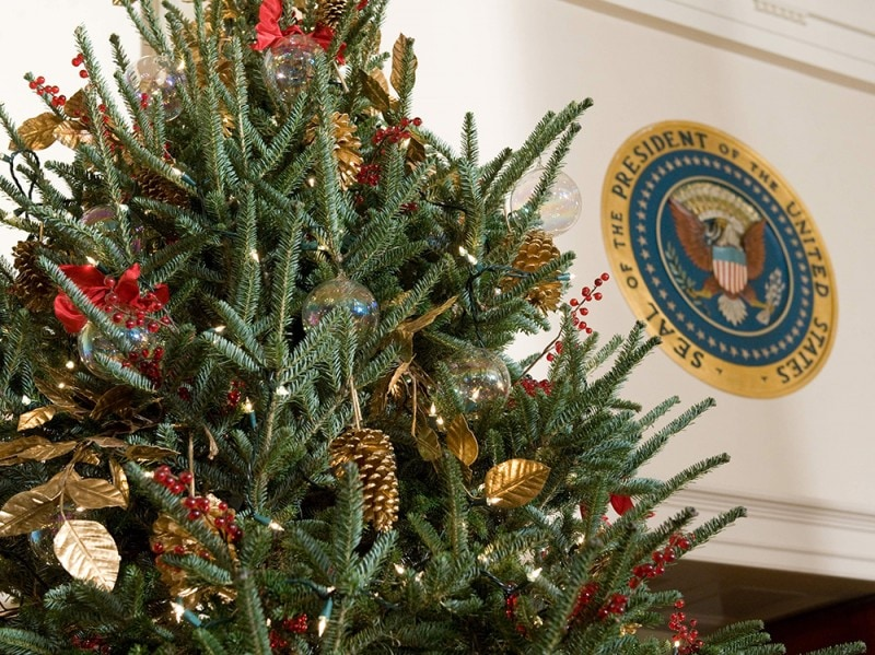 A decorated Christmas Tree is displayed