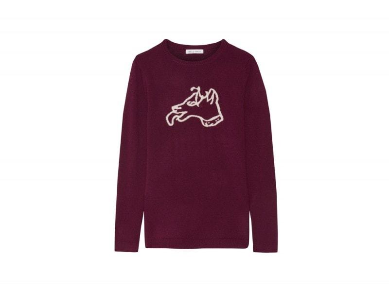 bella-freud-maglione-cane