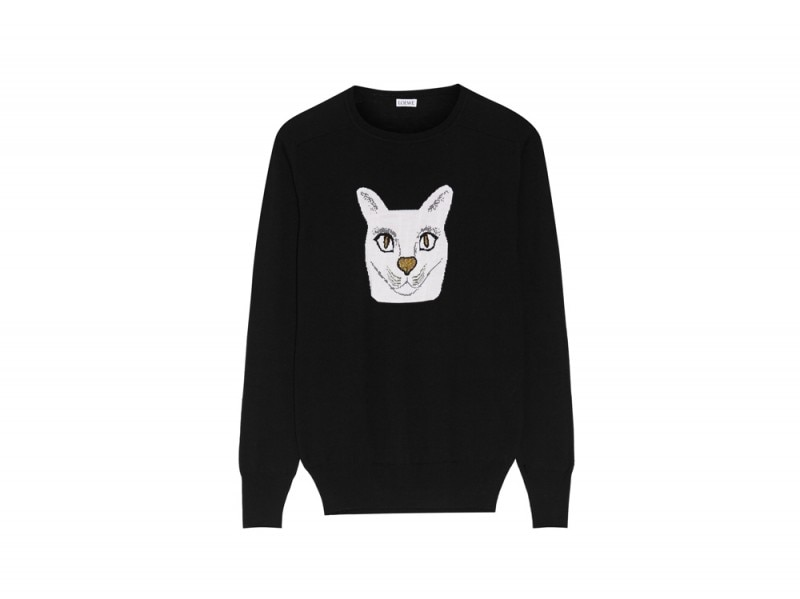 loewe-maglione-gatto