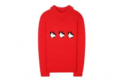 shrimps-maglione-rosso-gatto