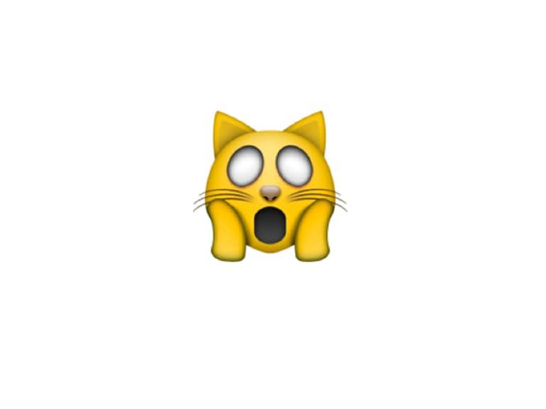 emoji gatto sorpreso