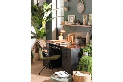 bureau-des-plantes
