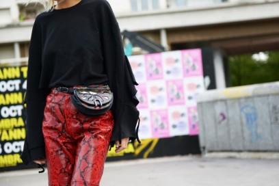 street-paris-day-2-pitone-pantaloni-800×599