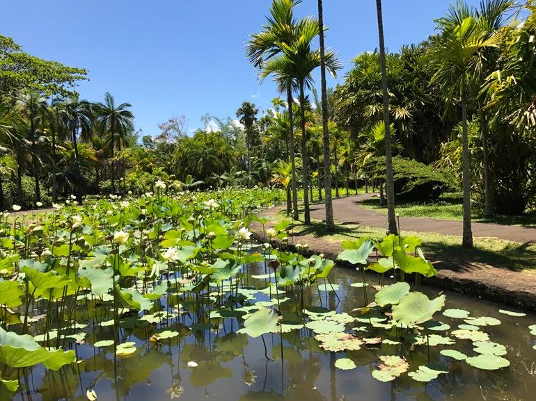 parco botanico