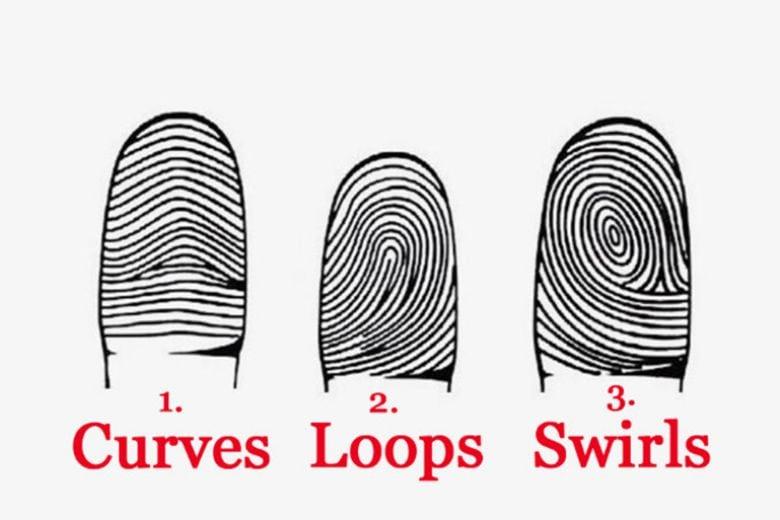 Dicci come sono le tue impronte digitali e ti diremo chi sei