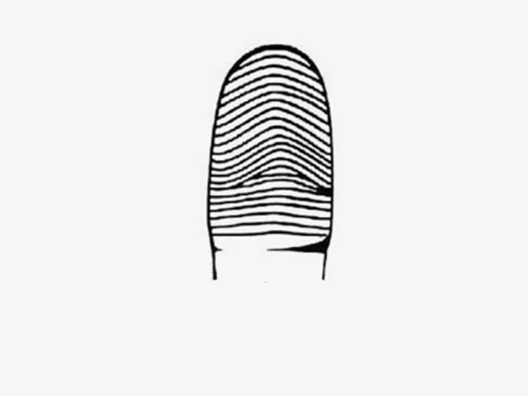 impronte digitali curve