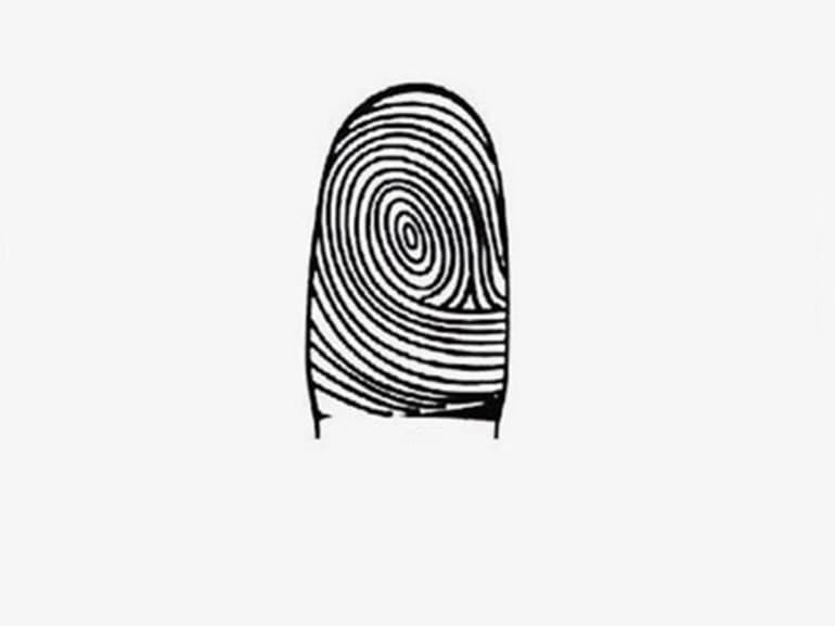 impronte digitali vortice