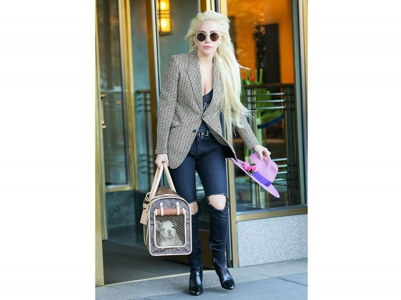 lady-gaga-jeans