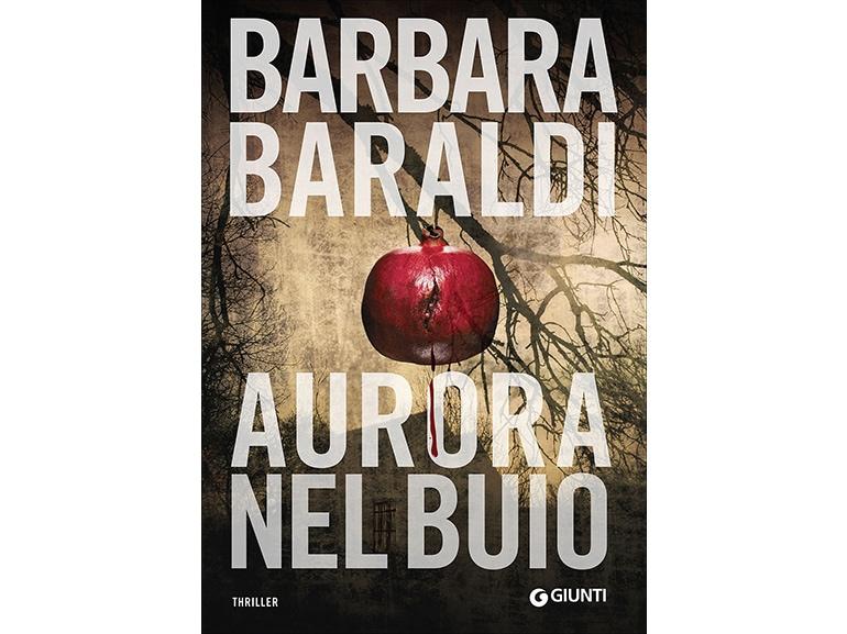 libri-giallo-thriller-aurora-nel-buio