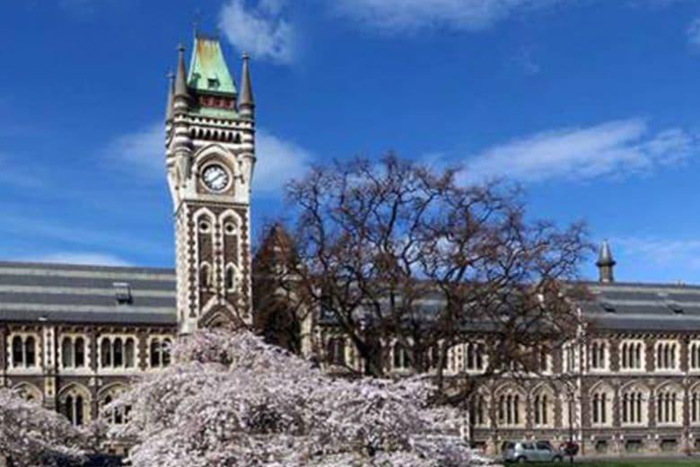 Quali sono le università più belle del mondo