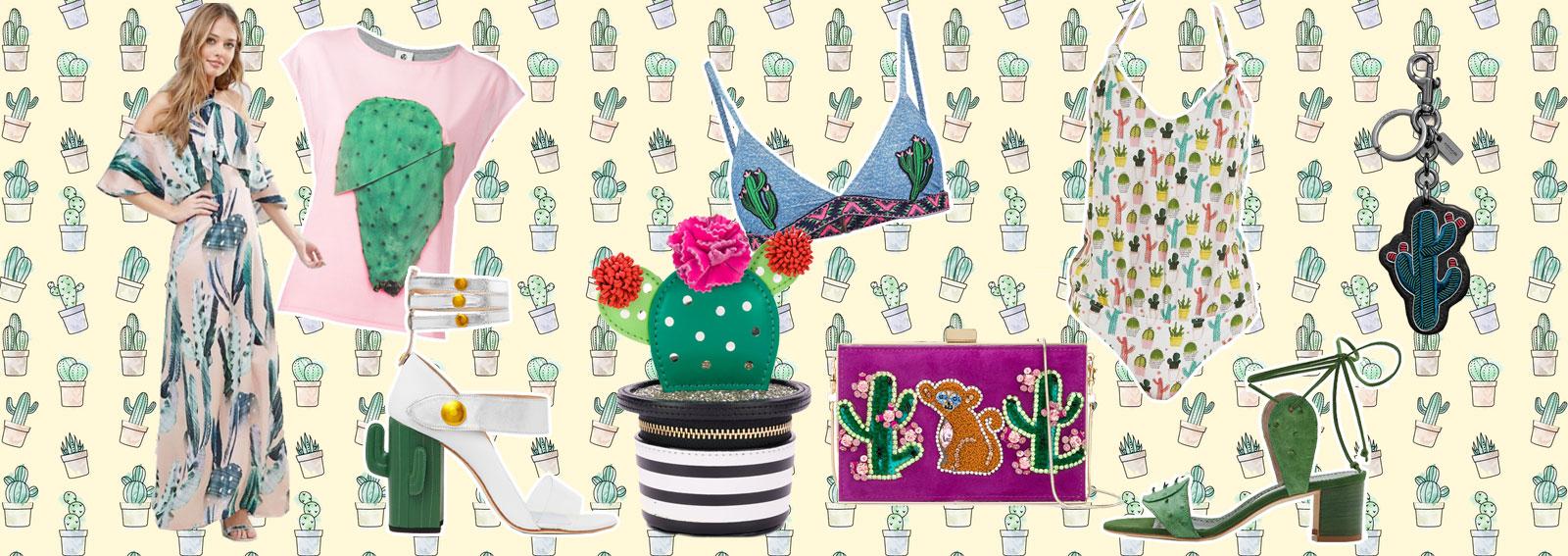 DESKTOP_cactus