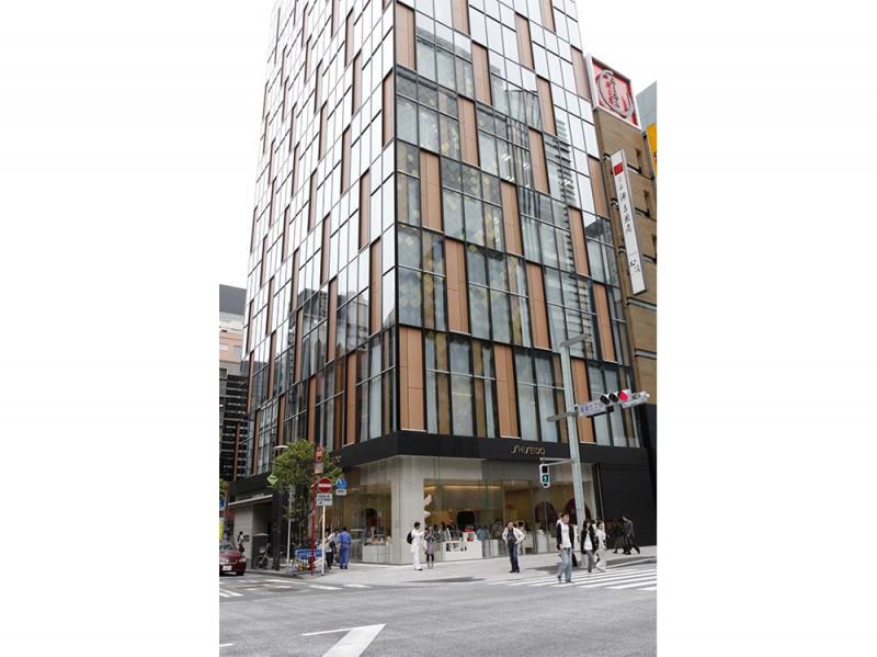 Building Facade Large
